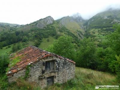Corazón de Picos de Europa;carros de fuego la selva negra tierra de campos aizkorri mesta